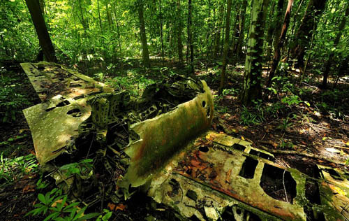 Remains Mitsubishi A6M Zero Fighter Ballalea