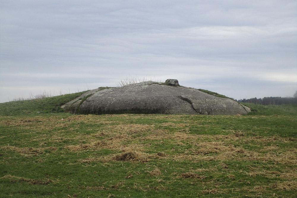 Westwall - Restanten Bunkers