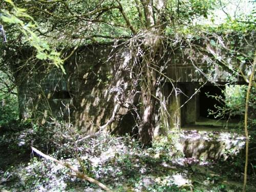 Bunker FW3/28 Broadbridge Heath
