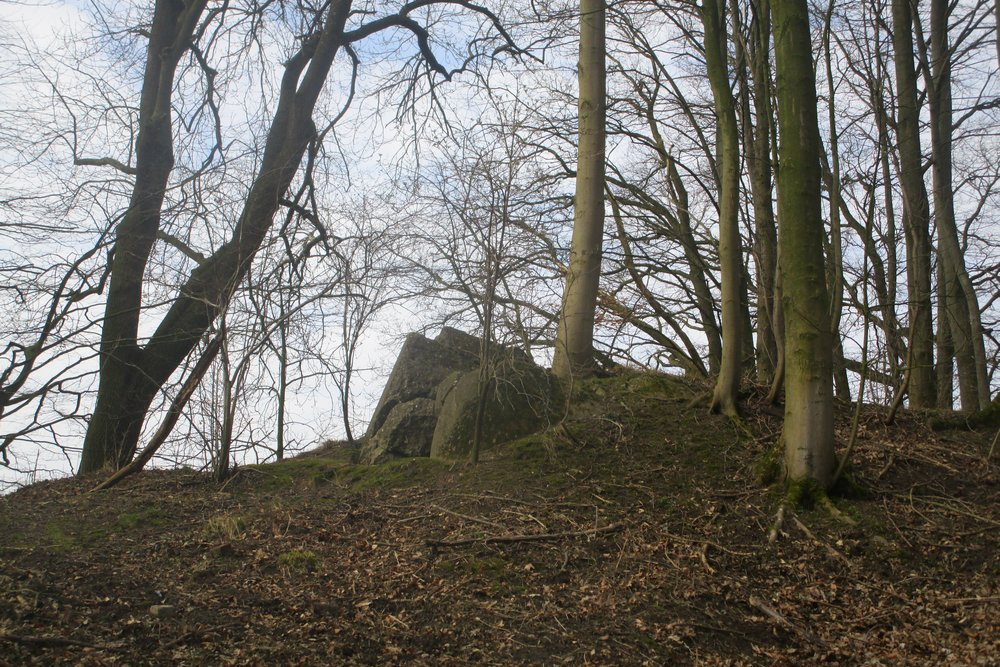 Westwall - Bunker Remains Augustiner Wald