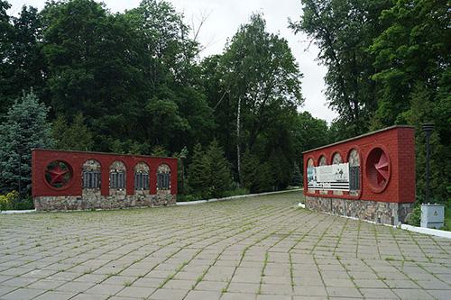 Soviet War Graves Vsehsvyatskoe Cemetery