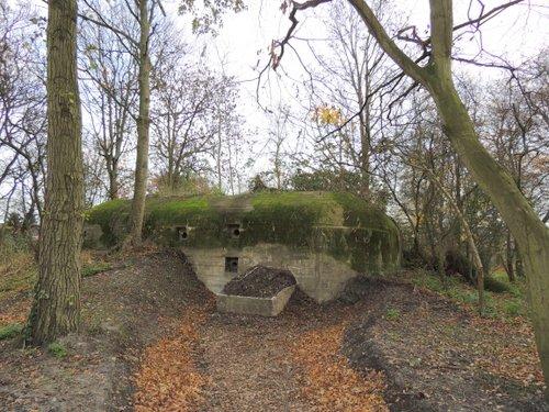 Bunker 6 Stützpunkt Brünhild 'Park Toorenvliedt'