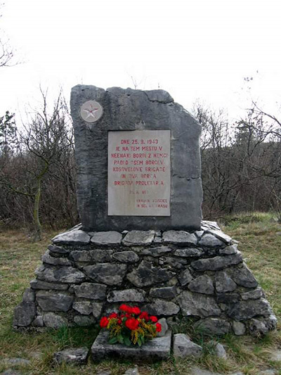Partisan Memorial Vojscica