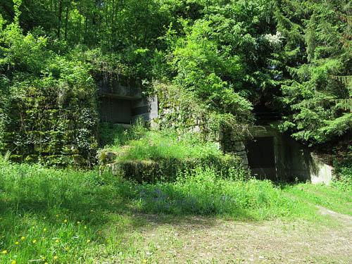 Limmat Line - Artilleriewerk Rein