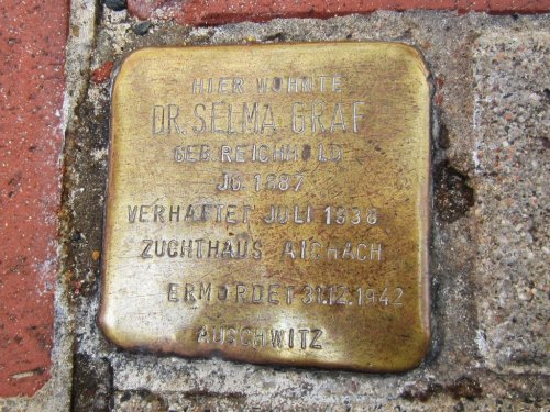 Stumbling Stone Franz-Ludwig-Straße 15