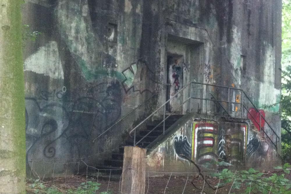 Bunker B31