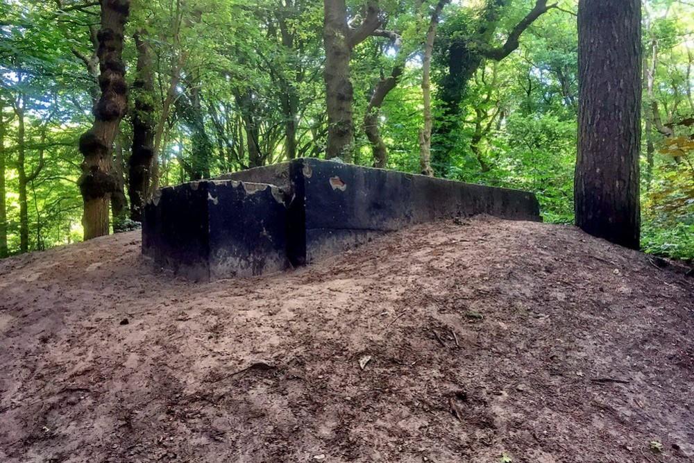 Bunker Noordwijk WN232