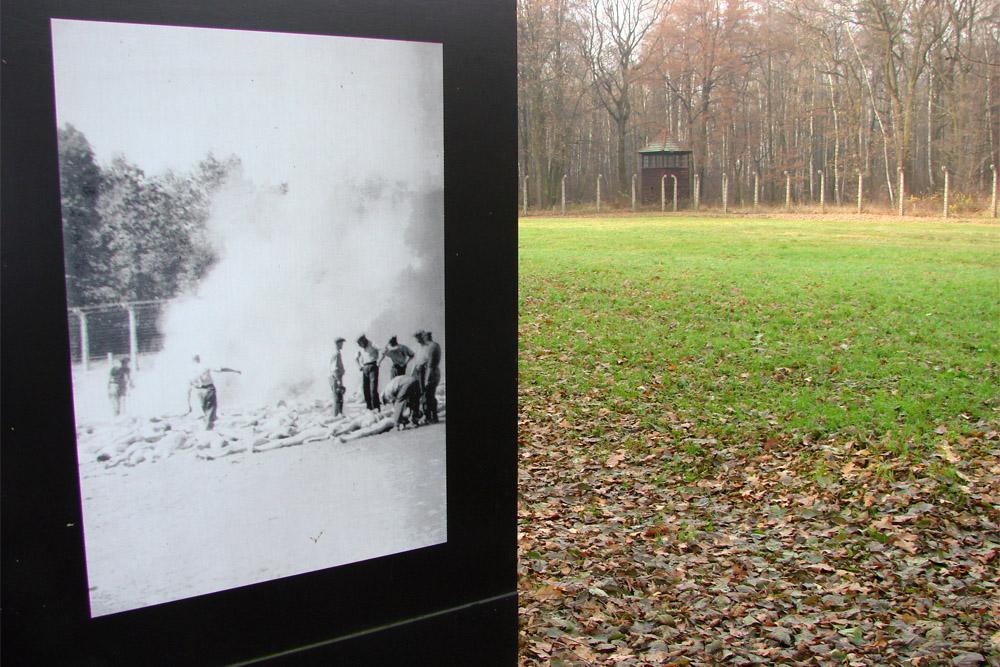 KZ Auschwitz - Asveld