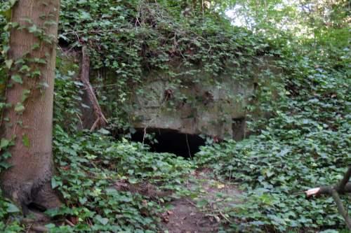 Fort Cwiczebny