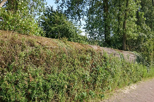 Stützpunktgruppe Castricum - Tankmuur