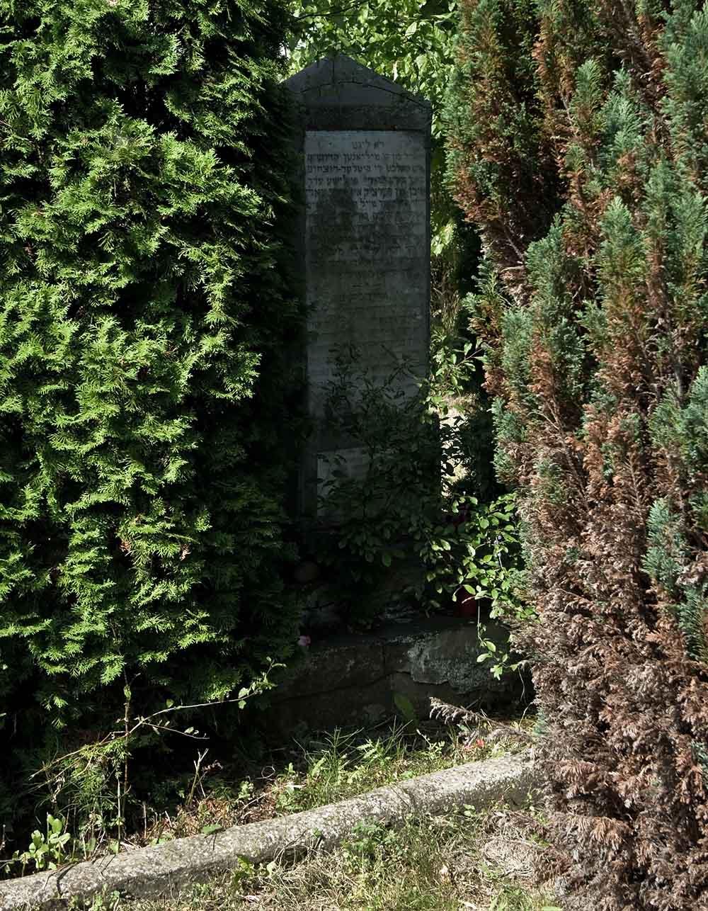 Graves Holocaust Victims Skierniewice