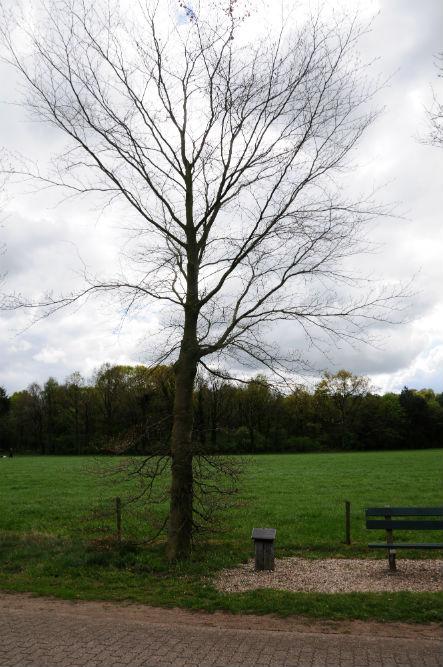 Herdenkingsboom Korenburgerveen