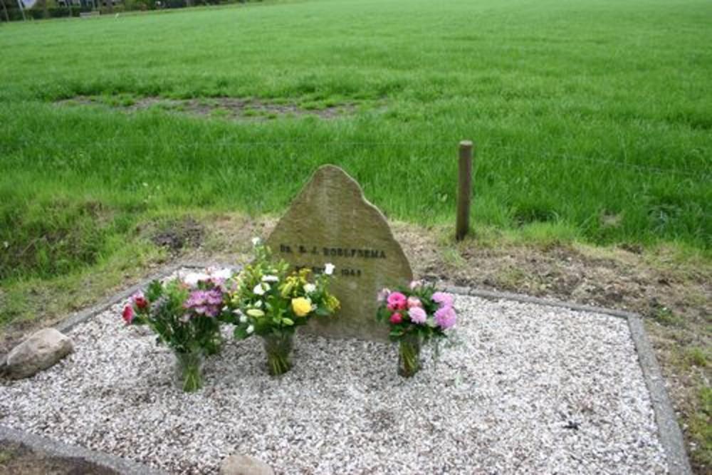 Memorial Dr. E.J. Roelfsema