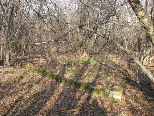 Remains German Observation Post