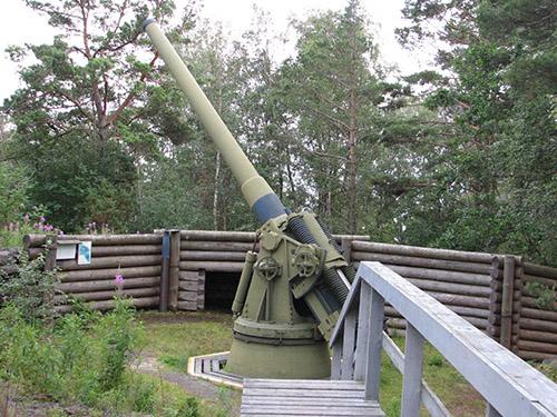 Fort Island Ulko-Tammio