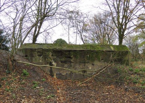 Bunker 3 Stützpunkt Brünhild 'Park Toorenvliedt