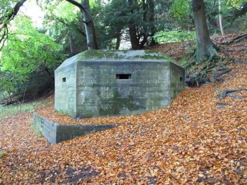 Bunker FW3/24 Goring