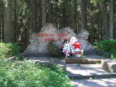 Graf Onbekende Russische Soldaat Zelenogorsk