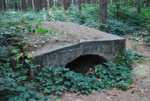 Australische Bunker Polygoonbos