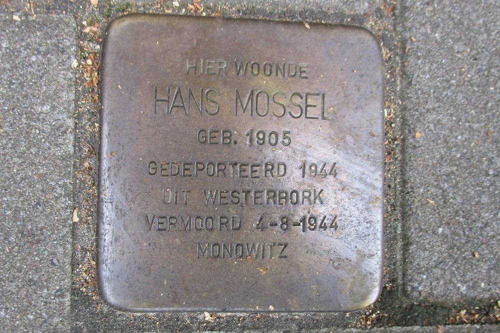 Remembrance Stone Geleenstraat 14