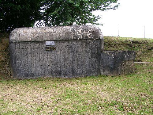Plaquette Verdedigers Fort de Leveau