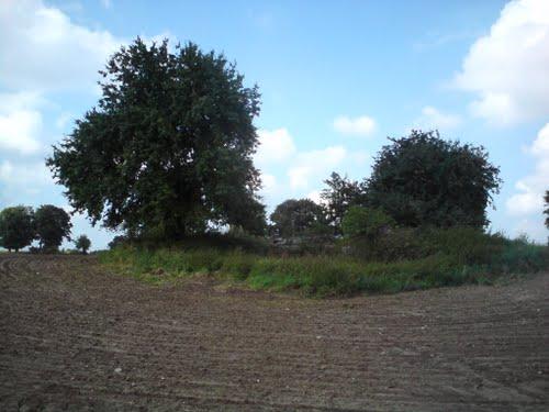 Pommernstellung - Restant Bunker Rutwica