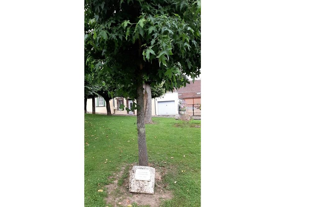 Memorial Tree Courville-sur-Eure