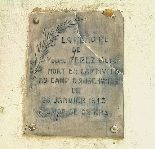 Plaquette Young Perez Victor