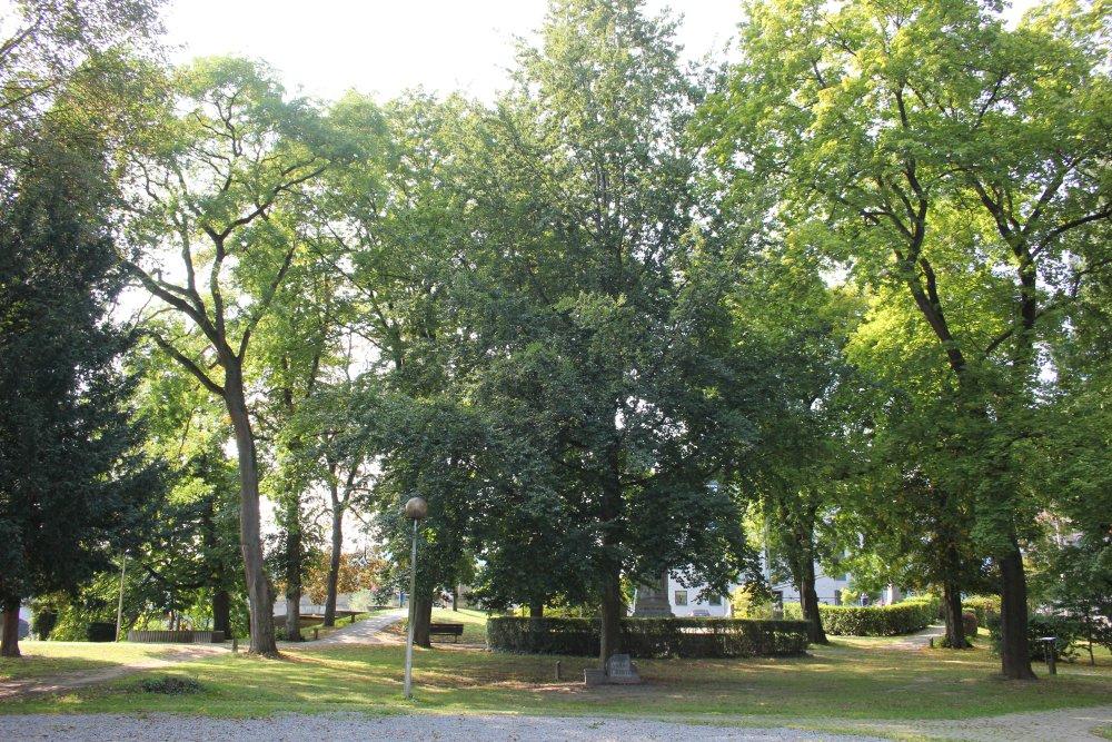 Vrijheidsboom Aywaille
