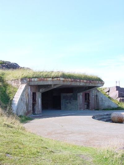 Cape Spear Battery