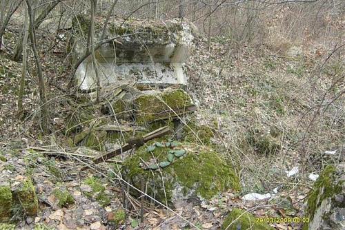 Molotov Line - Remains Casemate Załuż (D)