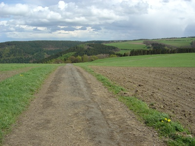 Kall Trail