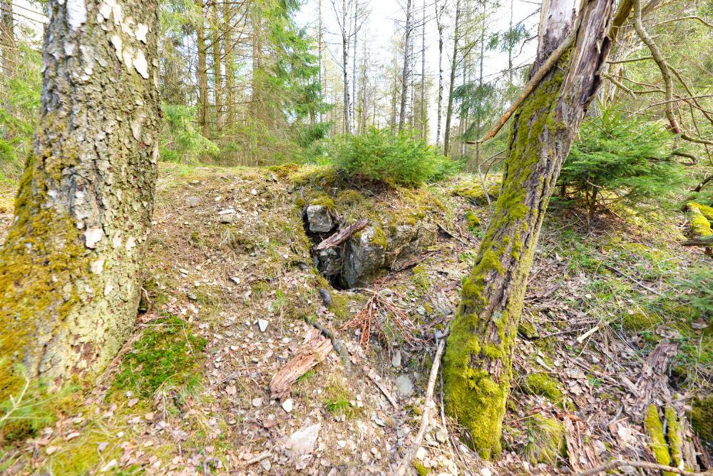 Bunker P110 Ochsenkopf