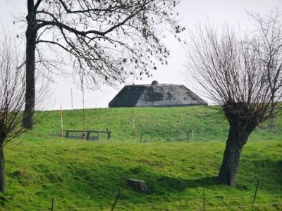 Group Shelter Type P Fort bij de Nieuwesteeg
