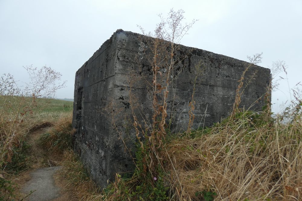 Pillbox Advanced Position Sippenaeken