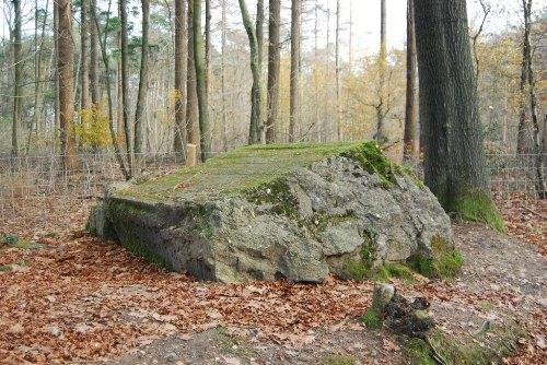 Duitse Bunker Polygoonbos
