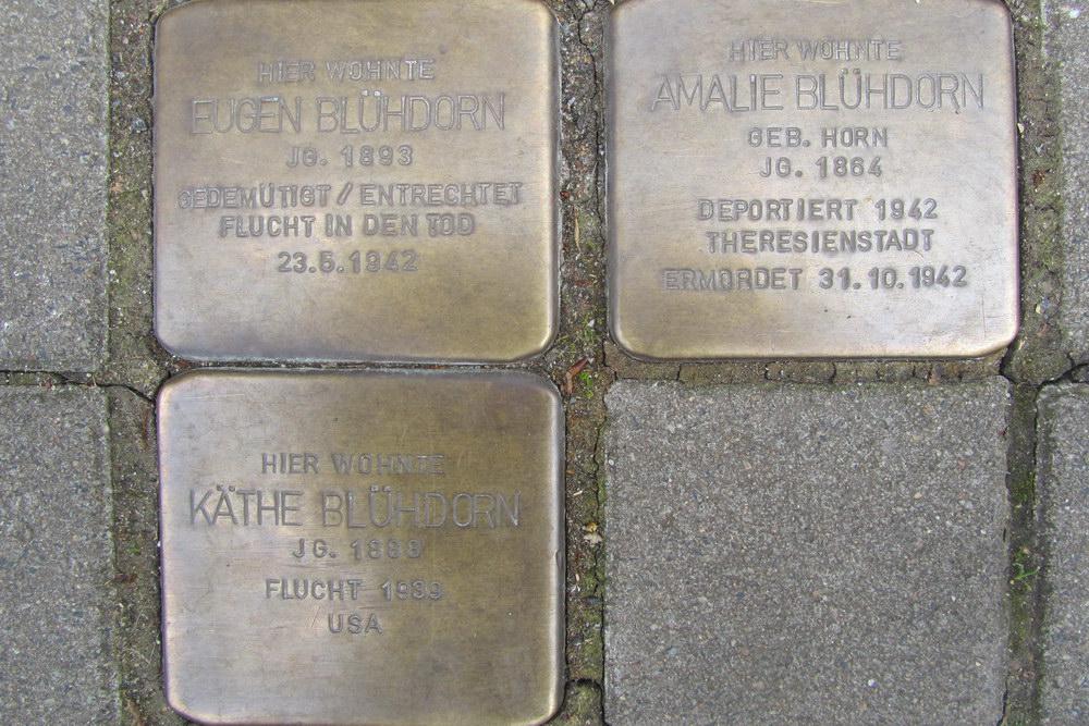 Stolpersteine Theodor-Heuss-Ring 60