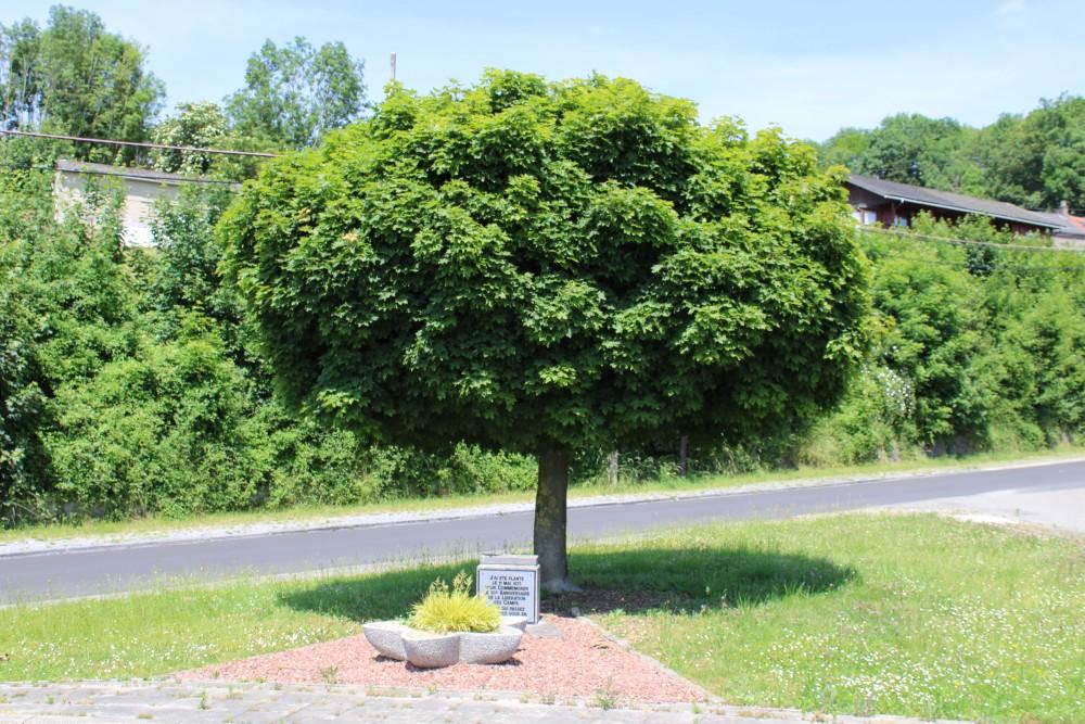 Liberation Tree Bas-Oha