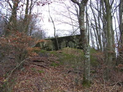 Westwall - Restant Bunker Irrel