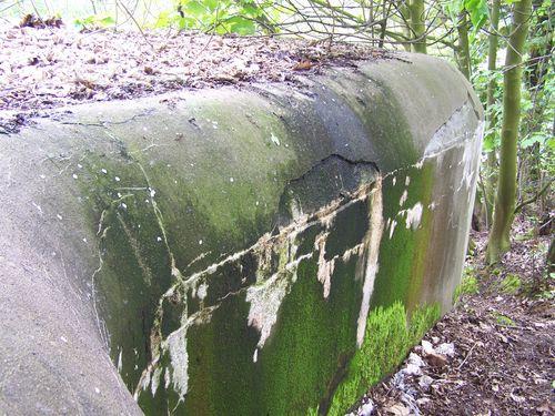 Belgische Bunker Zuid-Willemsvaart (BN2)