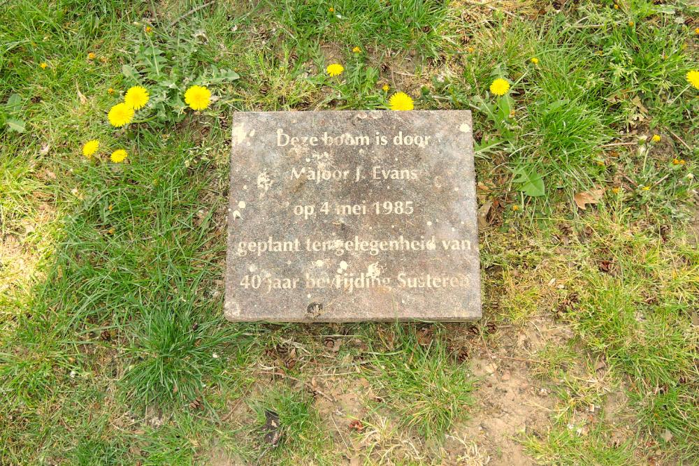 Herinneringsboom Majoor Evans Susteren
