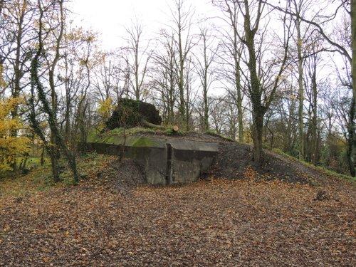 Bunker 4 Stützpunkt Brünhild 'Park Toorenvliedt'