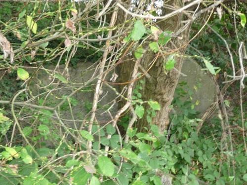 Remains Bunker 417