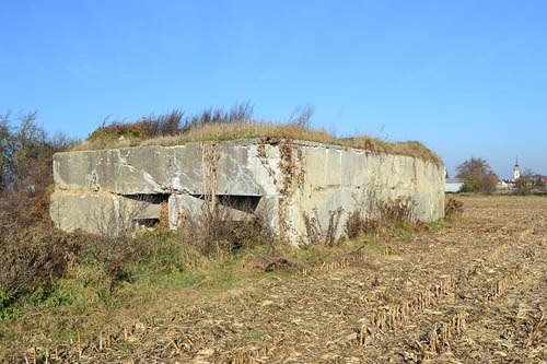 Maginot Line - Casemate Bantzenheim Sud (59/3)