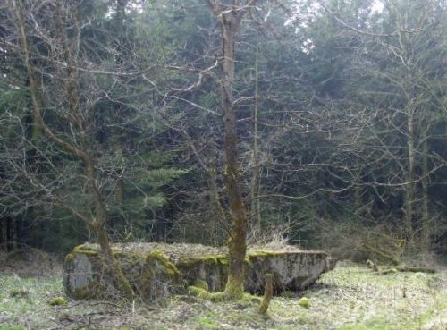 Westwall - Remains Bunkers Schneifel