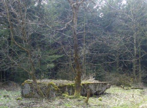 Westwall - Restanten Bunkers Schneifel