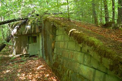 Maginot Line - Casemate Biesenberg (7)