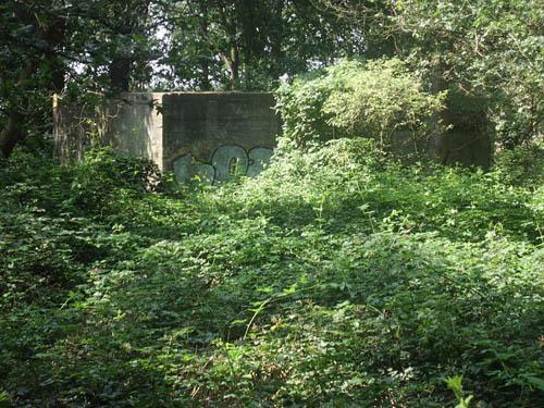 Pantherstellung - Bunker R003-P