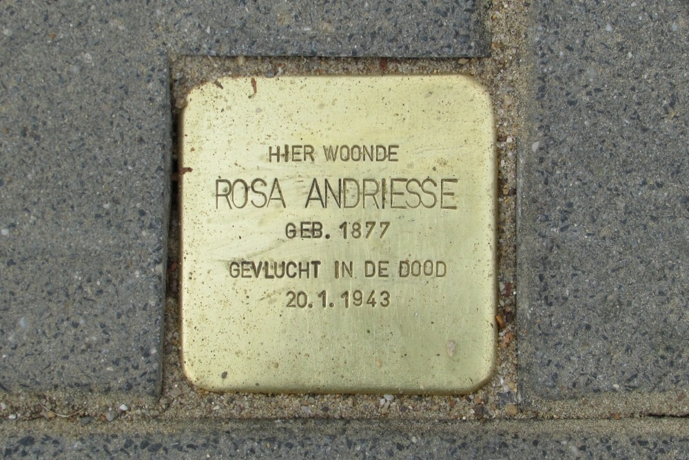 Stumbling Stone Van Bergenplein