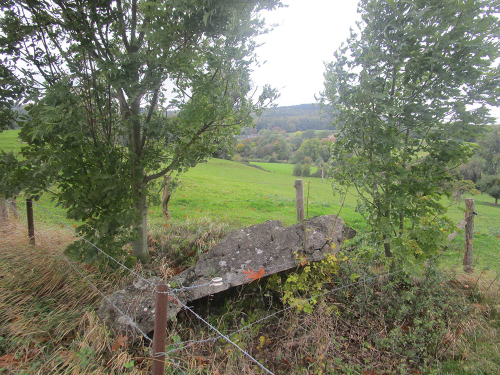 Westwall - Remains Bunker